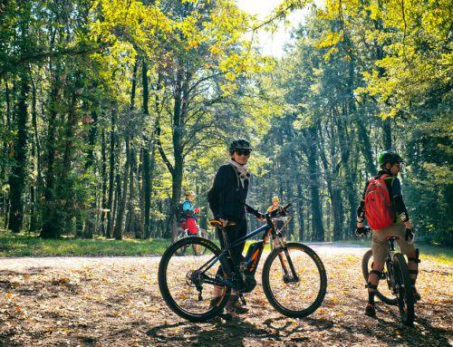FLOWgliano: single track sul Monte Fogliano